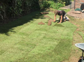Lawn and Turf Services by Dorset Tree Surgeons